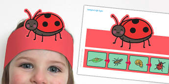 Ladybird Life Cycle Headband - ladybird, life cycle, headband