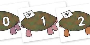Numbers 0-31 on Turtle to Support Teaching on The Great Pet Sale - 0-31, foundation stage numeracy, Number recognition, Number flashcards, counting, number frieze, Display numbers, number posters