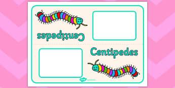 Centipedes Table Signs - centipedes, table signs, minibeasts
