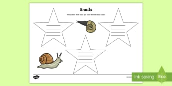 Facts I Have Learned about Snails Activity - Snails, Shell, Snailery, Mollusc, Living Things, Irish