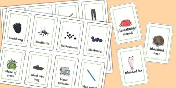 Three Syllable 'BL' Flash Cards - bl sound, syllable, flash cards