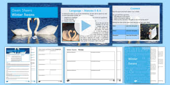 Introductory GCSE Poetry Lesson Pack to Support Teaching on 'Winter Swans' by Owen Sheers - Owen, Sheers, swans, nature, love, relationships, poetry, poems, AQA, GCSE Poetry, Love and relation