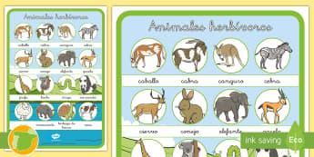 Póster: Animales herbívoros - animales, clasificación, dieta, herbívoros, qué comen,Spanish
