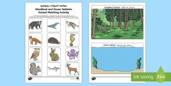 Woodland and Ocean Habitats Animal Sorting Activity Sheet Arabic/English  - Woodland and Ocean Habitats, Animal Sorting, Activity Sheet, EAL, Worksheet, Arabic