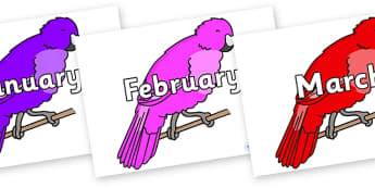 Months of the Year on Parakeets - Months of the Year, Months poster, Months display, display, poster, frieze, Months, month, January, February, March, April, May, June, July, August, September