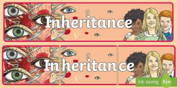 Inheritance Banner - CfE Science, science week, Edinburgh Science Festival, Glasgow Science Festival, Scottish Science Fe