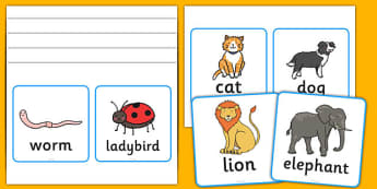 Vertebrates Or Invertebrates Cards - vertebrate, invertebrate, cards, word cards, flashcards, activity, vertebrate or invertebrate, game, matching, animals, animal, types, different
