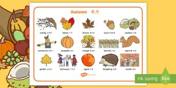 Autumn Word Mats English/Mandarin Chinese - Autumn Word Mats - Word mat, Harvest, Autumn, seasons,  A4, display, harvest,  harvest festival, fru