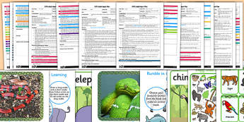 EYFS Adult Input Planning and Resource Pack to Support Teaching on Rumble in the Jungle  - input planning, adult led