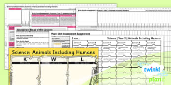 Science: Animals Including Humans Year 3 Unit Assessment Pack