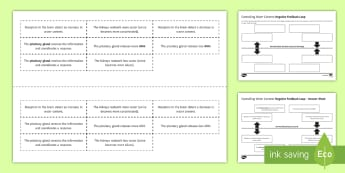 Controlling Water Content Negative Feedback Loop Sequencing Cards - Sequencing Cards, gcse, biology, negative feedback, negative feedback loop, negative feedback system