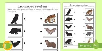 Ficha de emparejar sombras: Los animales nocturnos - animales, salvaje, animal, cocodrilo, canguro, mono, oso, polar, panda, jirafa, elefante, rinoceront