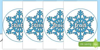 Posters d'affichage sur le thème de l'hiver : Mots de vocabulaire sur des flocons de neige. - Froid, saisons, français, cycle 1, brouillard,French