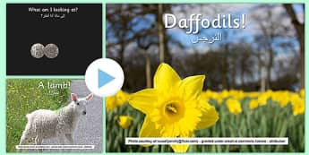 Spring What Can You See PowerPoint Arabic Translation - arabic, spring, powerpoint, senses