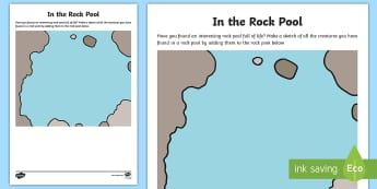 In a Rock Pool Sketching Activity Sheet - Beach, art, sea creatures, seaside, sea