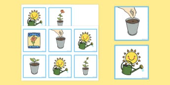 Plant Sequencing Cards - plant, sequencing, cards, sequence