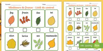 Descoperirea frunzelor de toamnă Listă de control - activități de toamnă, cunoașterea mediului, observarea naturii, tipuri de copaci, culorile toamn