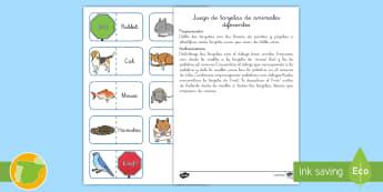 Juego: Encontrar los animales diferentes Inglés - pets, mascotas, animals, English, lengua extranjera, foreign language,Spanish-translation