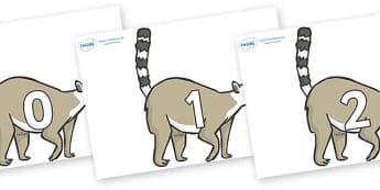 Numbers 0-50 on Lemurs - 0-50, foundation stage numeracy, Number recognition, Number flashcards, counting, number frieze, Display numbers, number posters