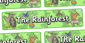 The Rainforest Display Banner - Jungle, Rainforest, Topic, Display, Posters, Freize, vines, A4, display, snake, forest, ecosystem, rain, humid, parrot, monkey, gorilla
