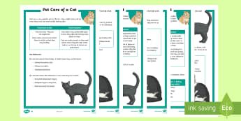 KS2 Pet Care of a Cat Differentiated Fact File - KS2 National Pet Month (April 2017), pet, pets, cats, looking after cats, cat behaviour, cat care, f