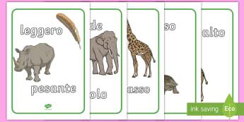 Differenza di misure parole e immagini Poster - differenza, di, misura, grandezza, peso, lunghezza, italiano, italian, poster, colori, vocaboli, ilu