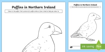 Puffin Colouring Page - Science Week, 10/03/17, coast, wildlife  Puffin, World Around Us, science week.
