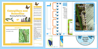Life Cycle of a Butterfly Discovery Sack - EYFS, Early Years, KS1, Key Stage 1, understanding the world, science, life cycles, minibeasts, insects
