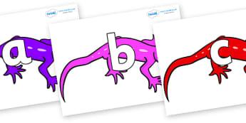 Phoneme Set on Geckos - Phoneme set, phonemes, phoneme, Letters and Sounds, DfES, display, Phase 1, Phase 2, Phase 3, Phase 5, Foundation, Literacy