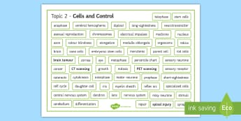 Edexcel Biology Cells and Control Word Mat - Word Mat, edexcel, gcse, biology, mitosis, meiosis, cell division, nervous system, neurone, sensory,