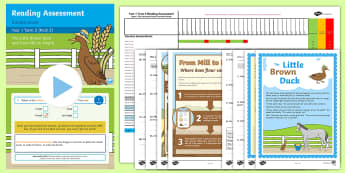 Year 1 Term 2 Paper 2 Reading Assessment Bumper Resource Pack - Year 1 Reading Assessment Guided Lesson PowerPoints, reading, read, assessment, test, powerpoint, ye
