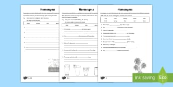 Homonyms Differentiated Activity Sheet - Language, Word Study, Vocabulary, Spelling, English Curriculum,Australia