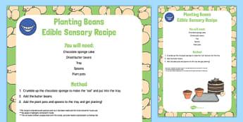 Planting Beans Edible Sensory Recipe to Support Teaching on Jasper's Beanstalk - Nick Butterworth, butter beans, cake