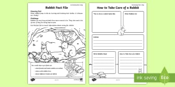 Rabbit Fact File Activity Sheet - amazing fact august, writing, english, kS1, amazing fact, sentences, worksheet