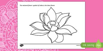 Indian Lotus Flower Colouring Page - ESL Diwali Resources