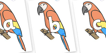 Phoneme Set on Parrots - Phoneme set, phonemes, phoneme, Letters and Sounds, DfES, display, Phase 1, Phase 2, Phase 3, Phase 5, Foundation, Literacy