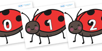 Numbers 0-100 on Ladybirds - 0-100, foundation stage numeracy, Number recognition, Number flashcards, counting, number frieze, Display numbers, number posters