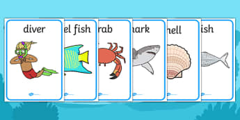Under the Sea Display Posters (A4) - Under the sea, sea, seaside, display, posters, water, tide, fish, sea creatures, shark, whale, marine, dolphin, starfish, waves, sand