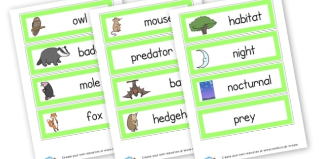 Nocturnal Animals Labels - Animals Classroom Signs and Labels Primary Resources,  Labels