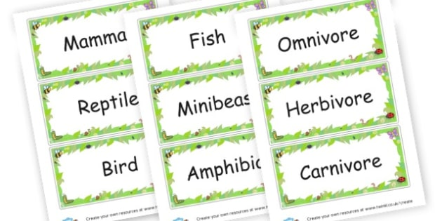 Animal category labels - Primary Resources English, Literacy, Letters and Sounds, phonics