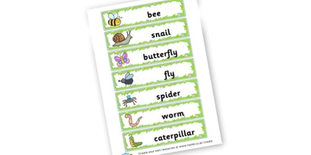 Minibeasts Word Cards - Minibeasts Literacy Primary Resources, minibeast, bugs