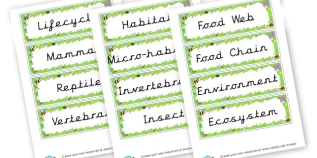 Habitat Key Words Cards - KS2 Science, Habitats, Visual Aids, Resources, Environment, Animal