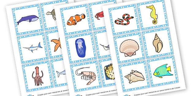 Under the Sea Animal Flashcards - Under the Sea Primary Resources - sea, shark, octopus, starfish