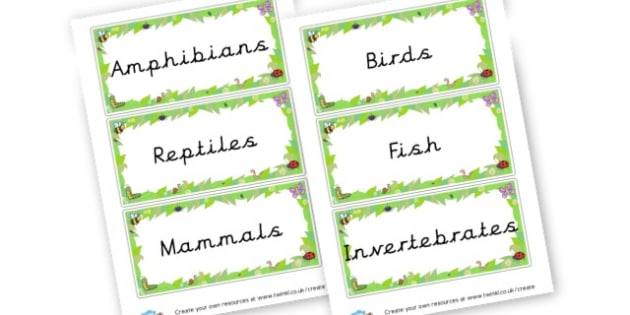 Animal Families Cards - Primary Resources English, Literacy, Letters and Sounds, phonics