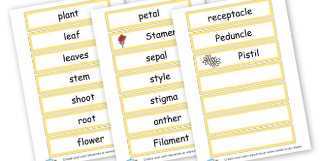 Plant/Flower List - Plants & Growth Primary Resources, flowers, grow, planting, garden