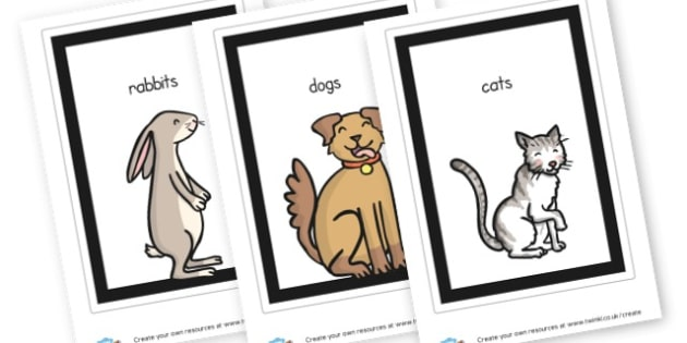 Animals Cards - Animals Classroom Signs and Labels Primary Resources,  Labels