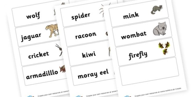 Nocturnal Animals Cards - Primary Resources English, Literacy, Letters and Sounds, phonics