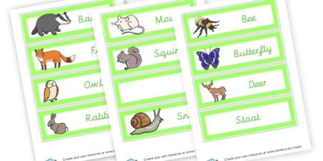 Woodland Animals Themed Labels - Forest & Woodland Literacy Primary Resources, forest, woodland