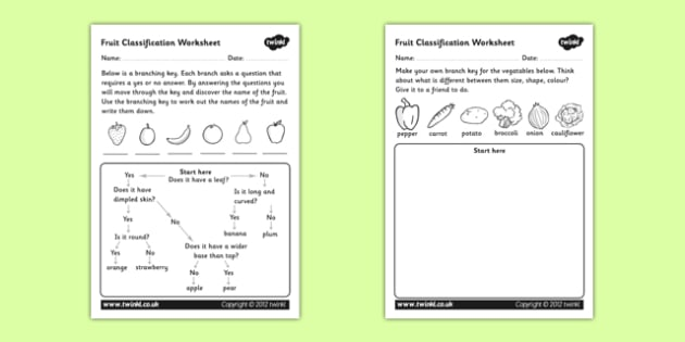 Fruit Classification Worksheet classifying fruits – Classification Worksheets