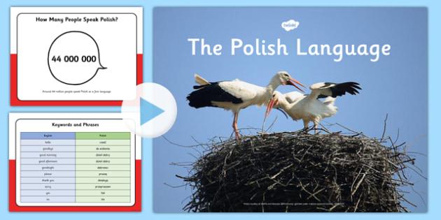 Polish Language PowerPoint - polish language, powerpoint, polish, language